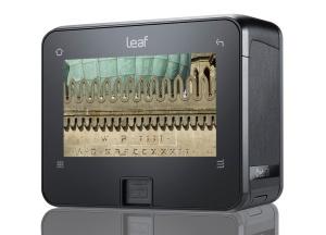 LeafCredo50