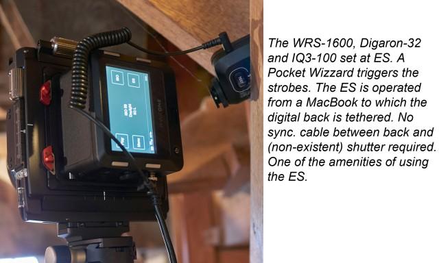 WRS-1600_text